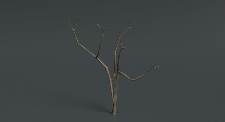 Dead Trees and Plants Collection royalty-free 3d model - Preview no. 18
