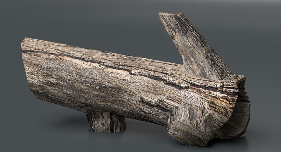 Dead Trees and Plants Collection royalty-free 3d model - Preview no. 26