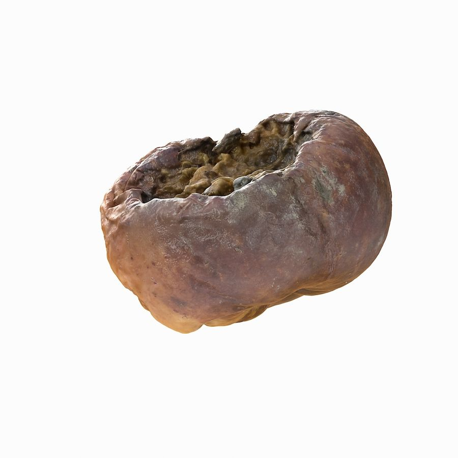 Rotte rotte Apple royalty-free 3d model - Preview no. 10