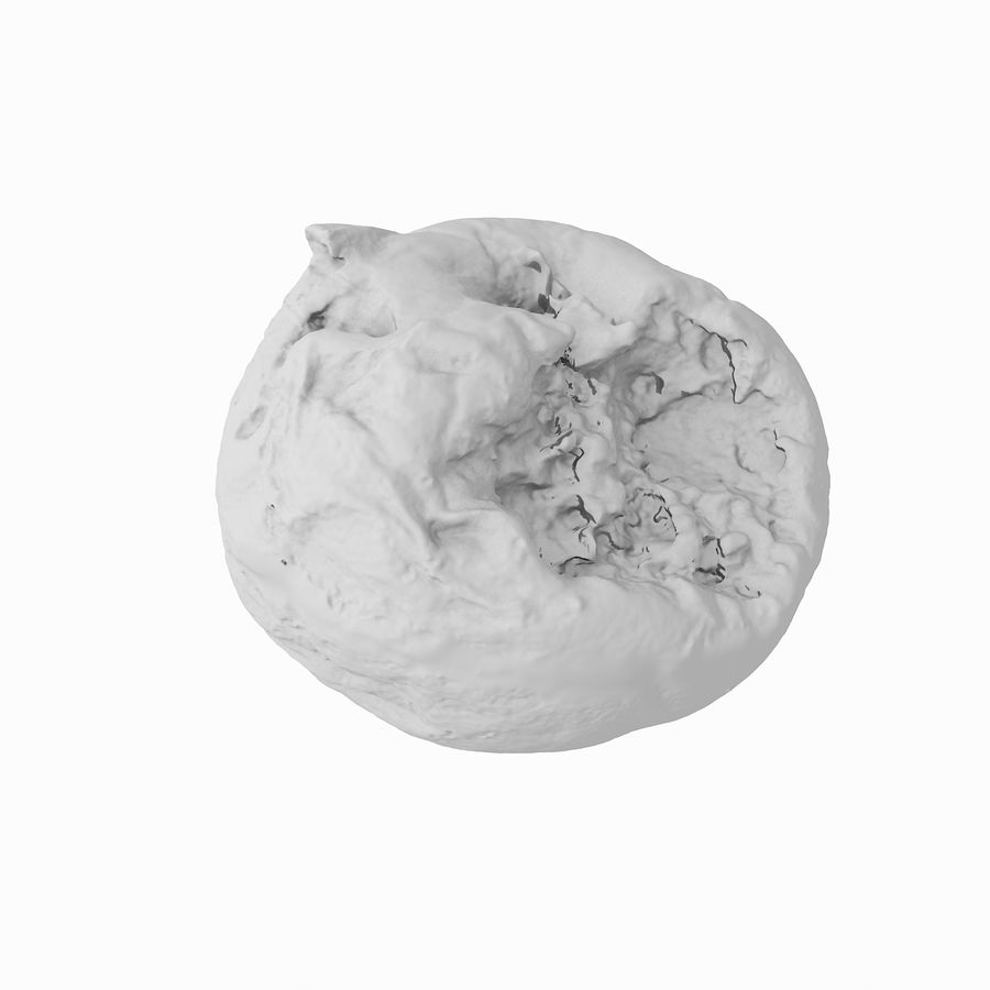 Rotte rotte Apple royalty-free 3d model - Preview no. 34