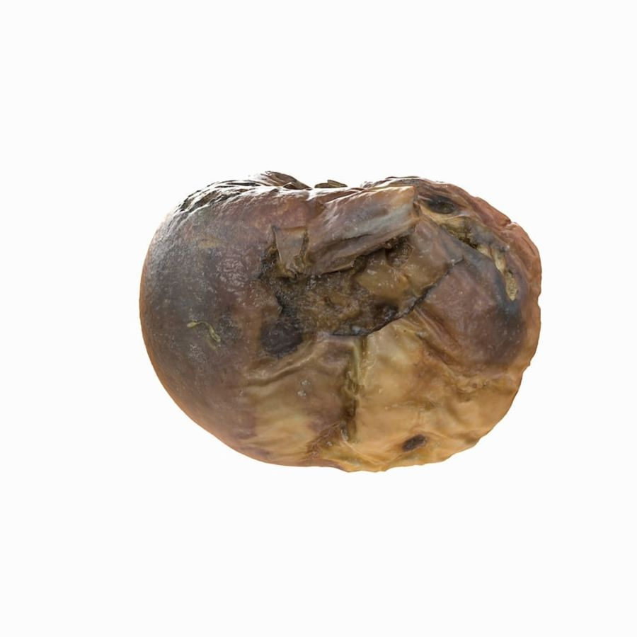 Rotte rotte Apple royalty-free 3d model - Preview no. 6