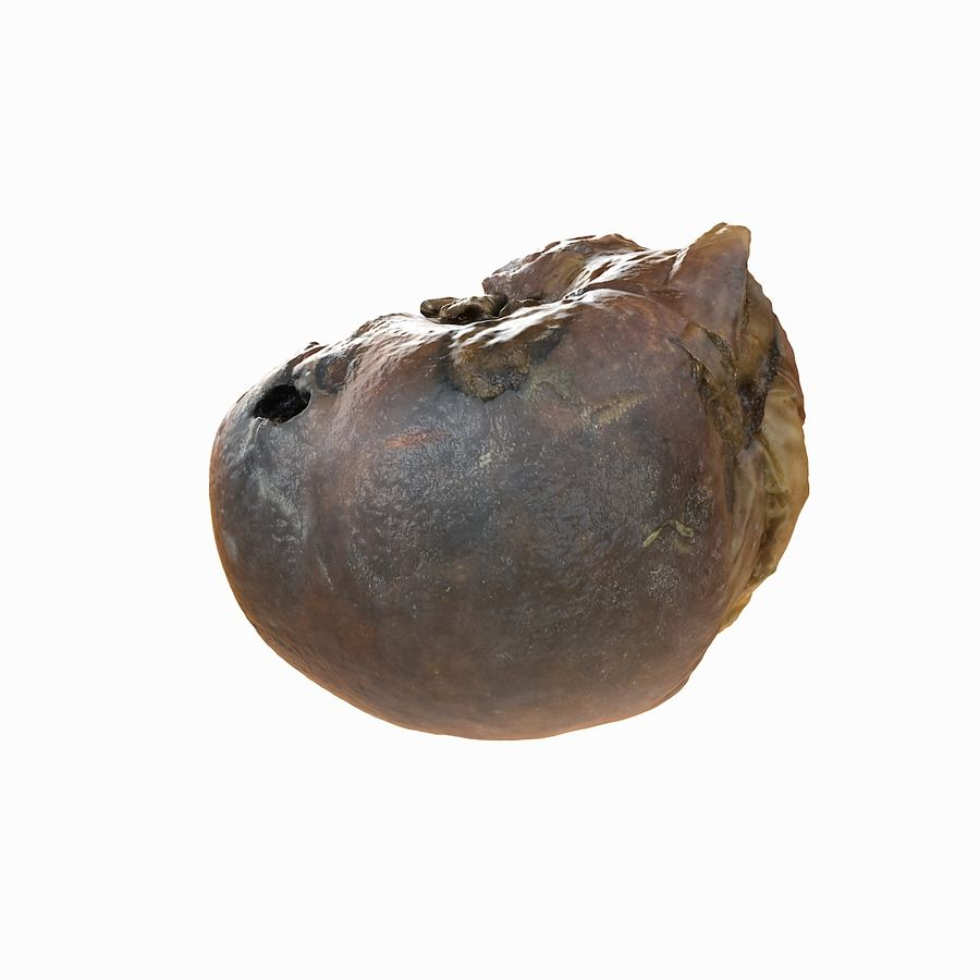 Rotte rotte Apple royalty-free 3d model - Preview no. 7
