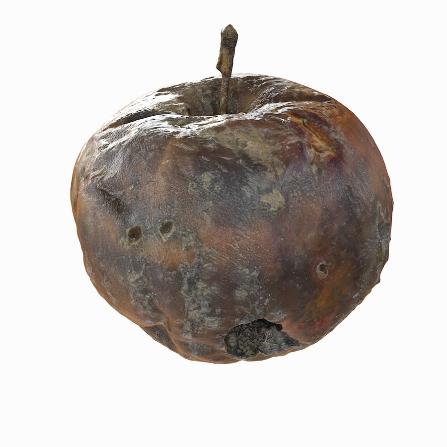 Rotte Rotte Apple 03 royalty-free 3d model - Preview no. 17