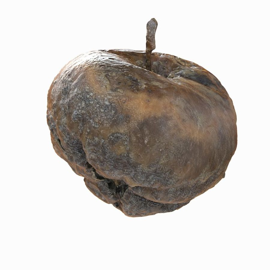Rotte Rotte Apple 03 royalty-free 3d model - Preview no. 30