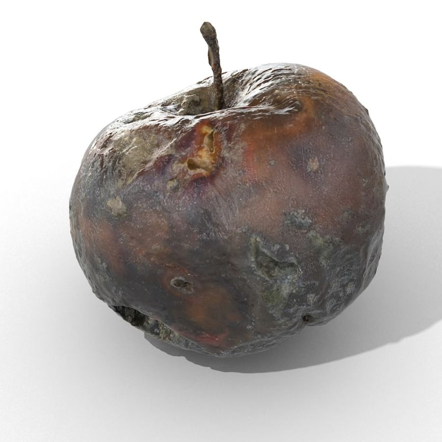 Rotte Rotte Apple 03 royalty-free 3d model - Preview no. 3