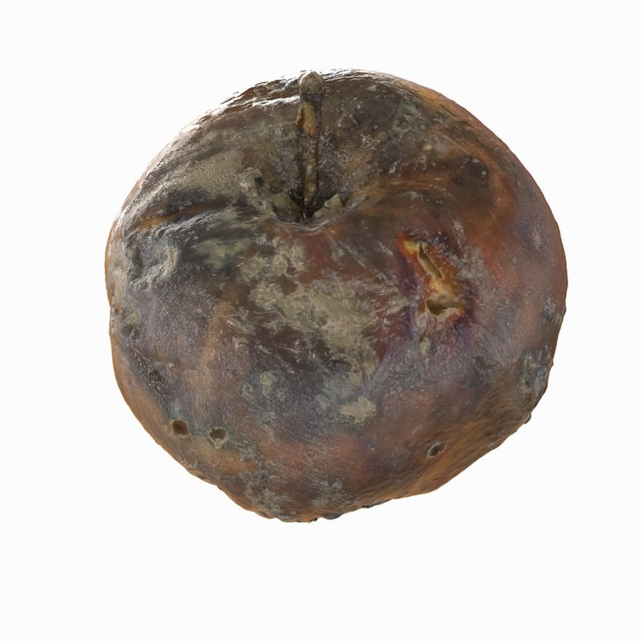 Rotte Rotte Apple 03 royalty-free 3d model - Preview no. 16