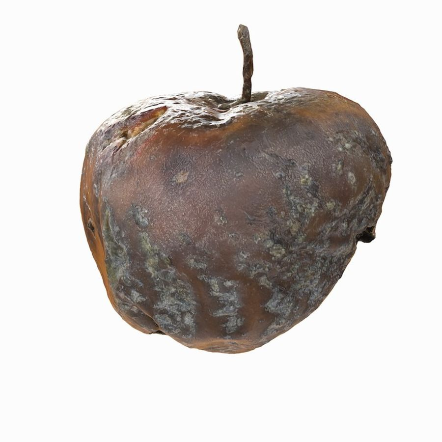 Rotte Rotte Apple 03 royalty-free 3d model - Preview no. 35