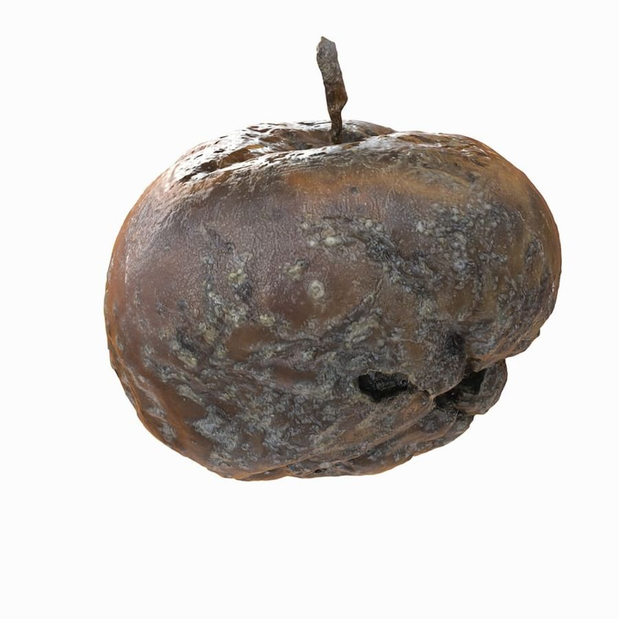 Rotte Rotte Apple 03 royalty-free 3d model - Preview no. 32