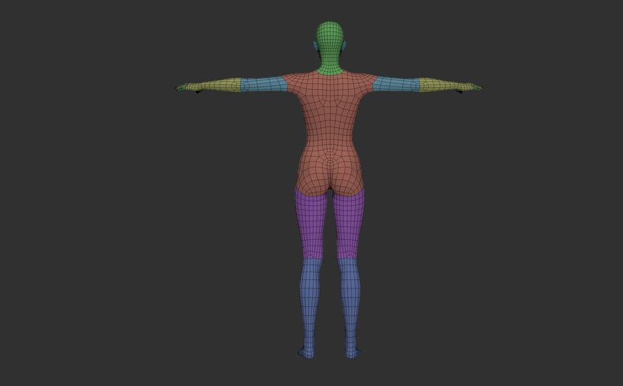 Female Base Mesh royalty-free 3d model - Preview no. 9
