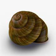 Snail_Shell 3d model