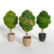 Árbol de 3 modelos: parte 3 modelo 3d