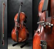 Cello und Bogen 3d model