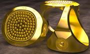 GOLDRING 2014 3d model