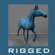 cavallo 3d model