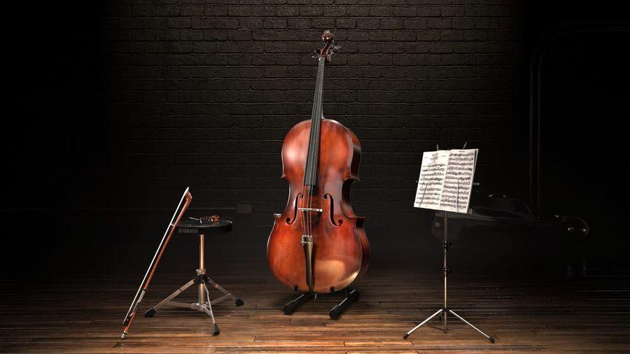 Scène de scène de violoncelle royalty-free 3d model - Preview no. 4