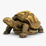 Escultura Tortule modelo 3d