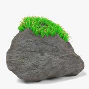 Steen en mos 3d model