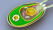 Structure des algues 3d model
