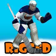 hockey goalkeepr 3d model