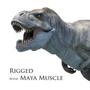 Tyrannosarus Rex con Músculo Maya modelo 3d