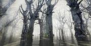 Floresta do pântano 3d model