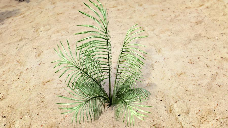 식물 잔디와 나무 팩 royalty-free 3d model - Preview no. 4