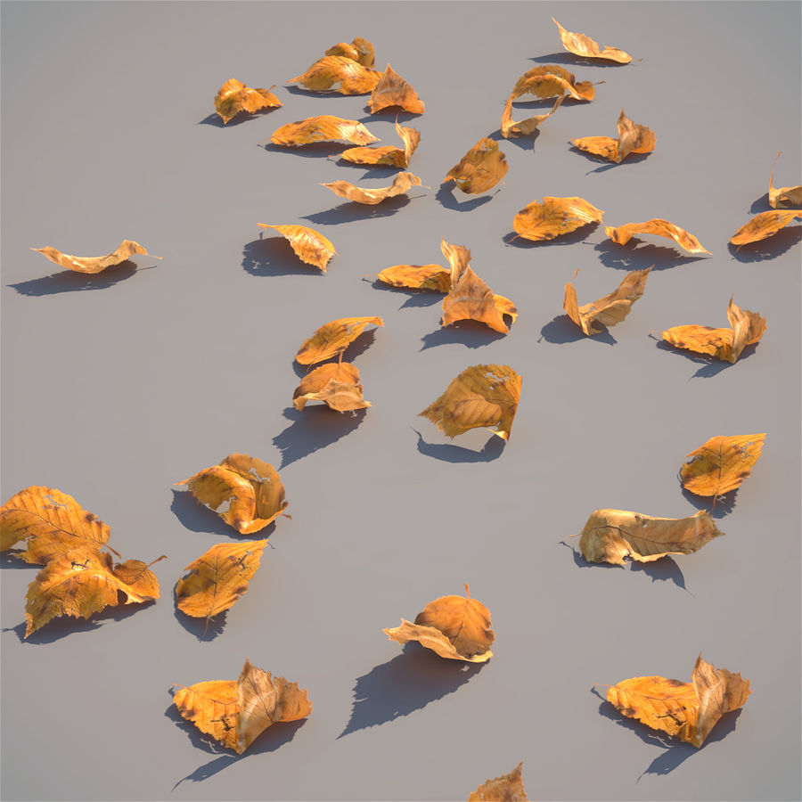 Leaves autumn 3D Model $12 -  ma  obj  fbx - Free3D