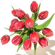 tulips_bouquet v3 02 3d model