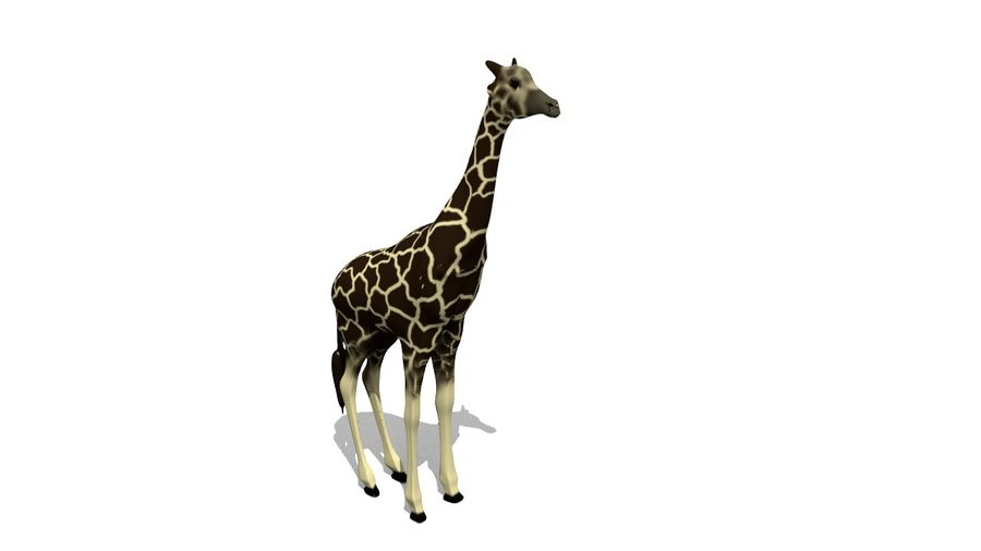 Giraffe Lowpoly royalty-free 3d model - Preview no. 4