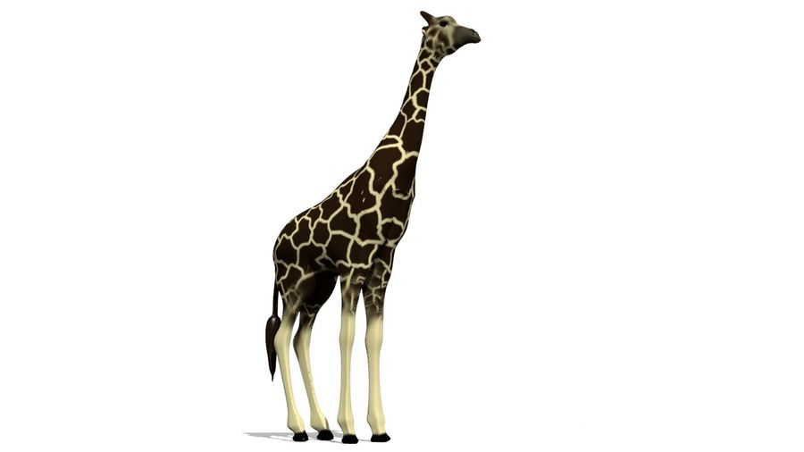 Giraffe Lowpoly royalty-free 3d model - Preview no. 1