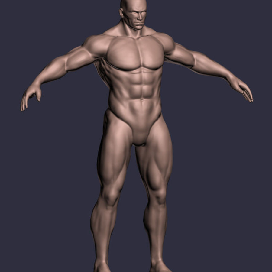 Male A-Posed Character royalty-free 3d model - Preview no. 1