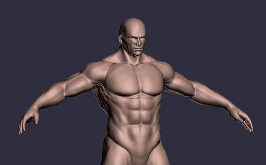 Male A-Posed Character royalty-free 3d model - Preview no. 4