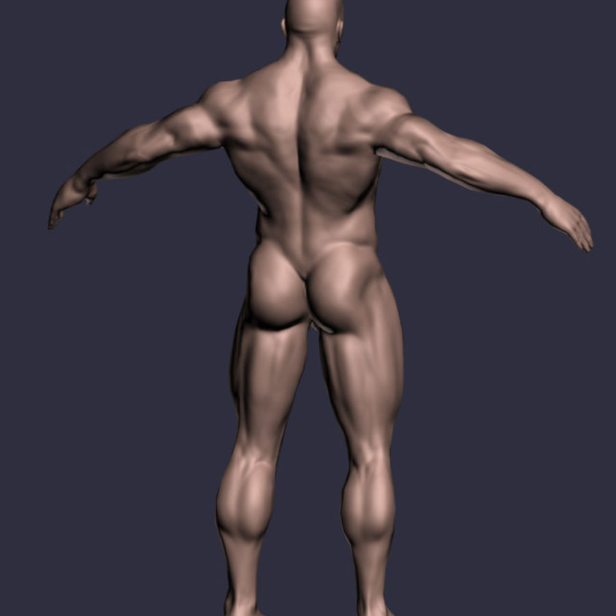 Male A-Posed Character royalty-free 3d model - Preview no. 3