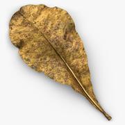 Leaf Old 3D Scan 3d model