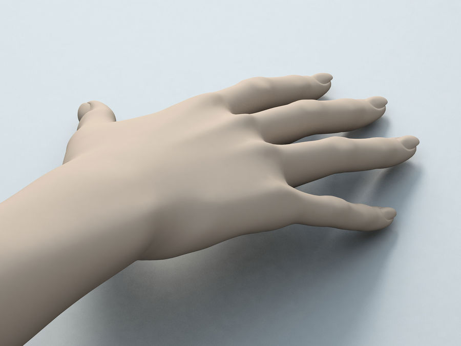 Female Arm A royalty-free 3d model - Preview no. 3