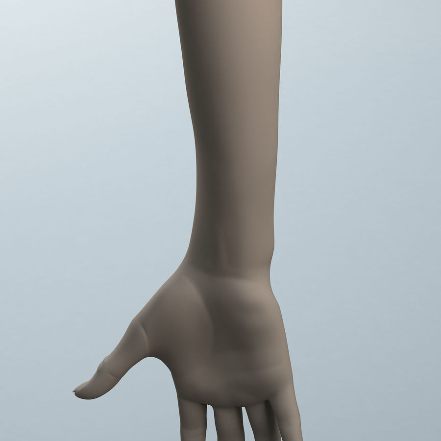 Female Arm A royalty-free 3d model - Preview no. 7