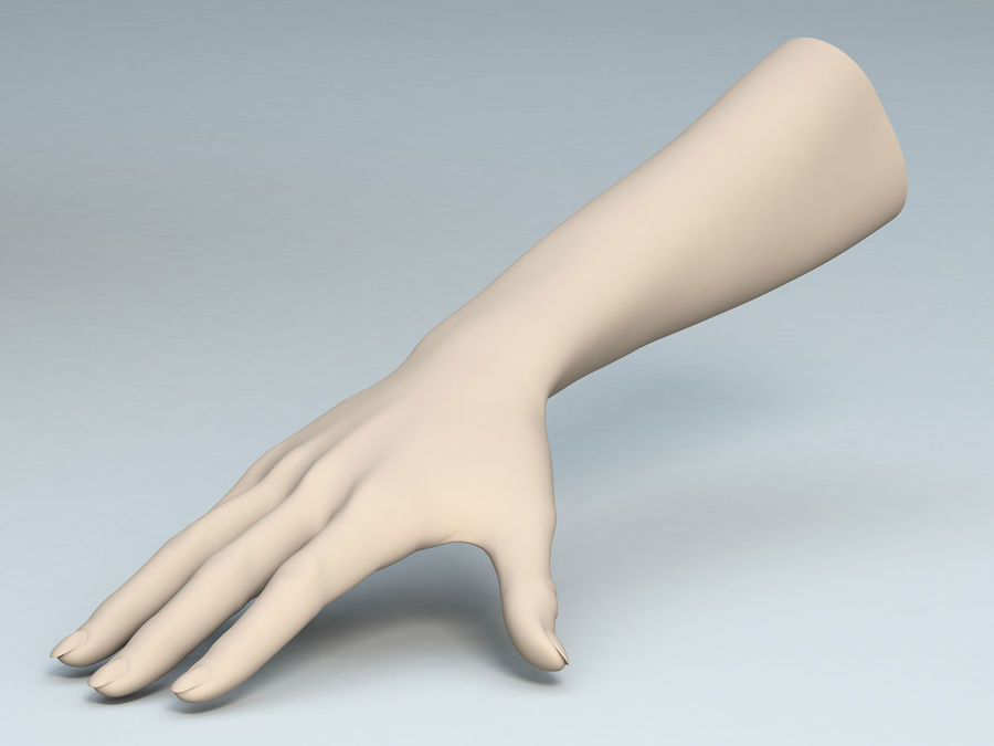 Female Arm A royalty-free 3d model - Preview no. 1