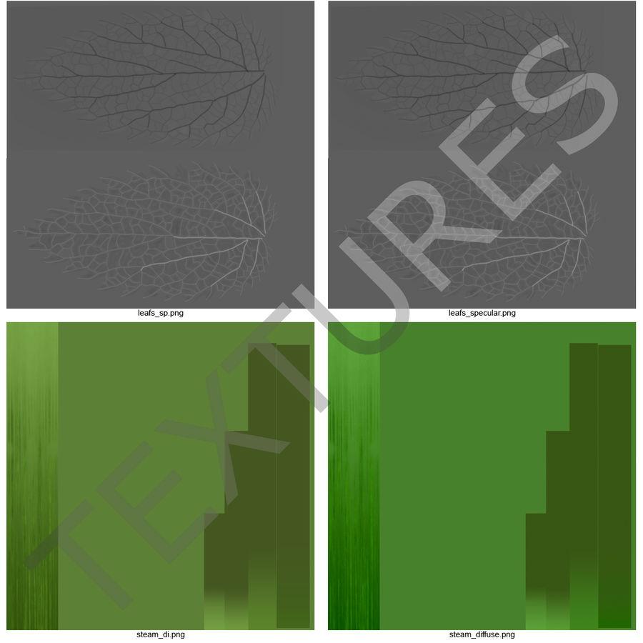 Crenate Leaf Modèle 3D royalty-free 3d model - Preview no. 21