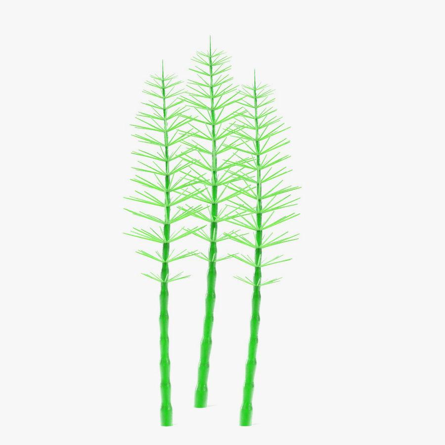 Aquatic Plants royalty-free 3d model - Preview no. 17