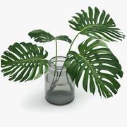 Monstera Leaves 3d model
