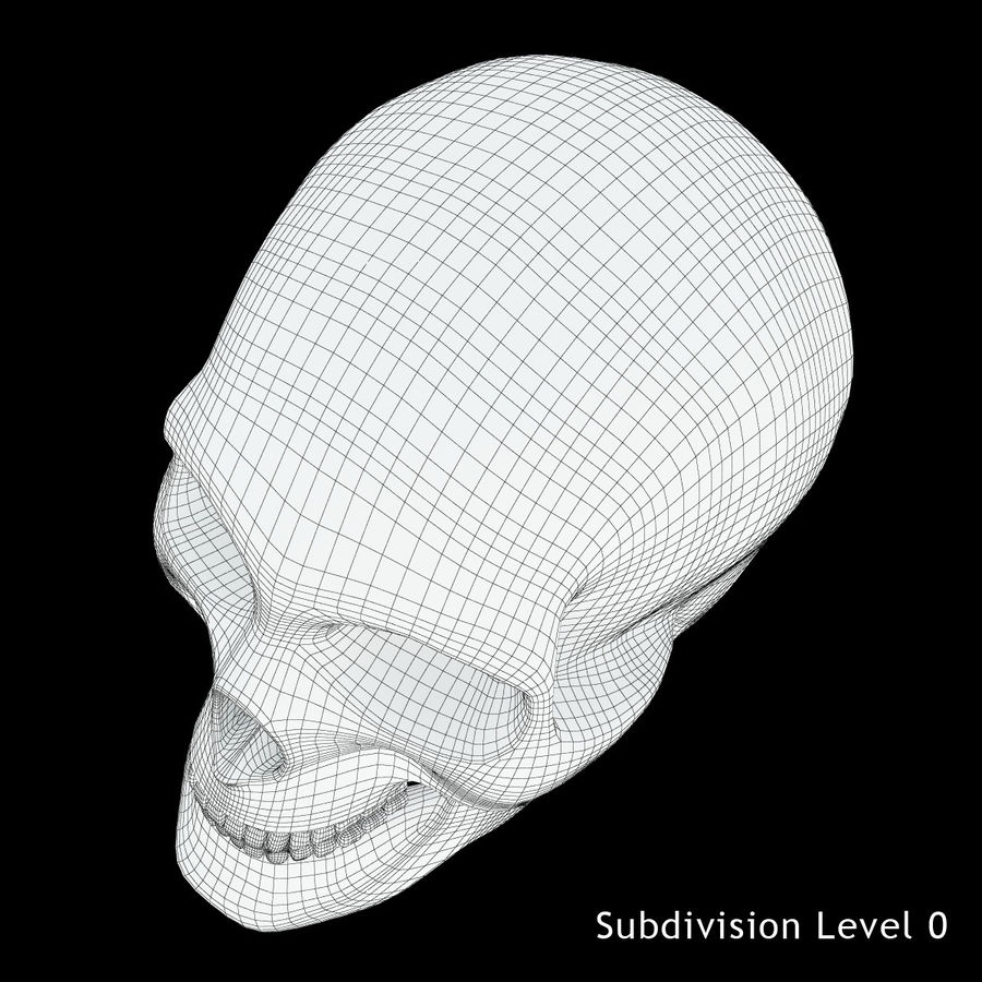 Человеческий череп royalty-free 3d model - Preview no. 16
