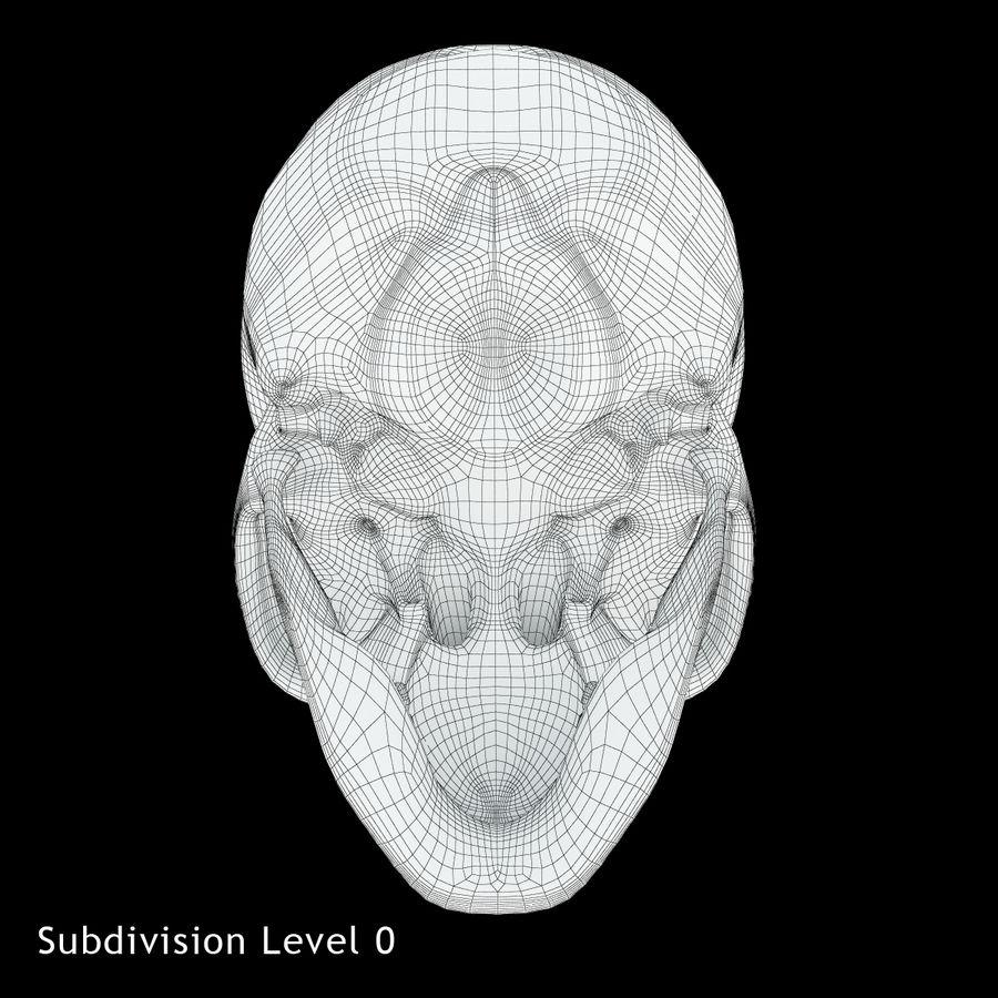 Crâne humain royalty-free 3d model - Preview no. 12