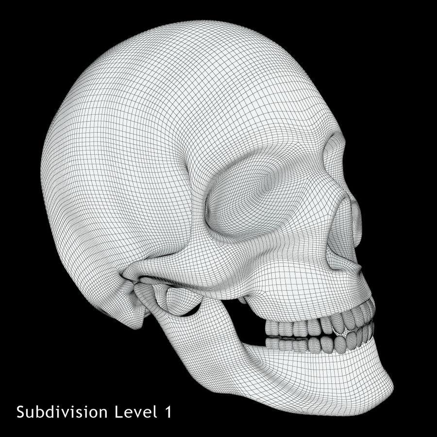Crâne humain royalty-free 3d model - Preview no. 9