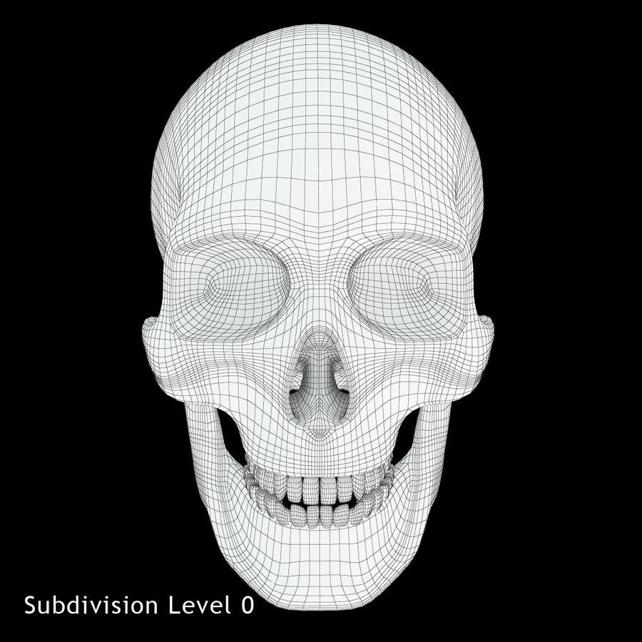 Crâne humain royalty-free 3d model - Preview no. 10