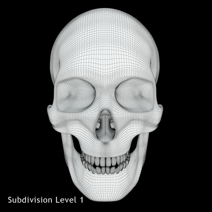 Crâne humain royalty-free 3d model - Preview no. 11
