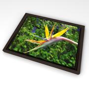 Framed Canvas Wall Photo 3d model