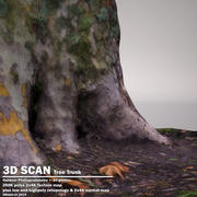 DBuzzi 3D Scan Tree Trunk C 3d model