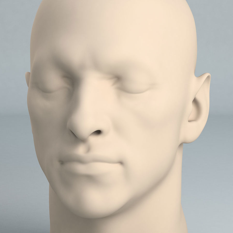 Cabeça masculina A royalty-free 3d model - Preview no. 1