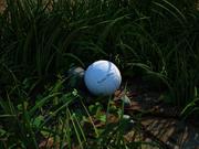 Трава, мяч, камень 3d model