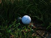 Hierba, bola, piedra modelo 3d
